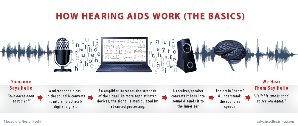 How Hearing Aids Work Graphic