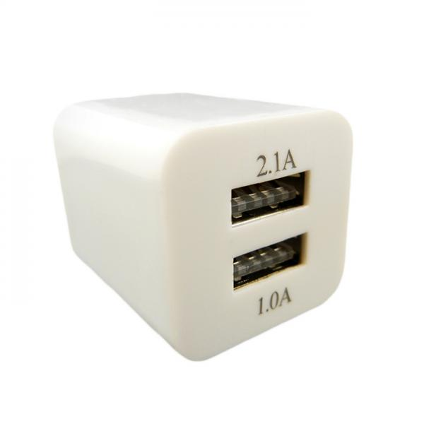Dual USB Wall Adapter for Mini Charger - front